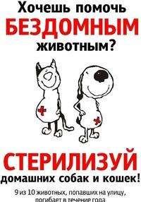 Льготная стерилизация животных в Бердске