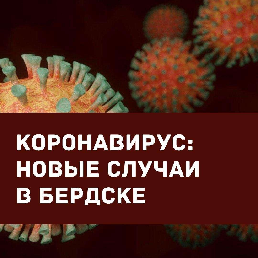 1100 случаев заражения COVID-19 зафиксировано с начала пандемии в Бердске
